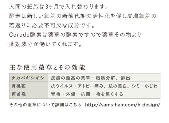 corede_04